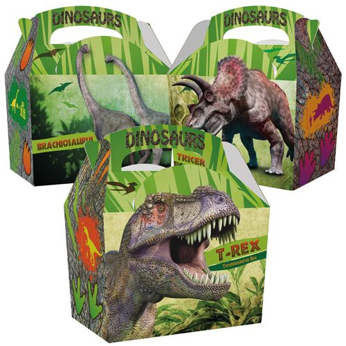 Dinosaurs Meal Box  x250